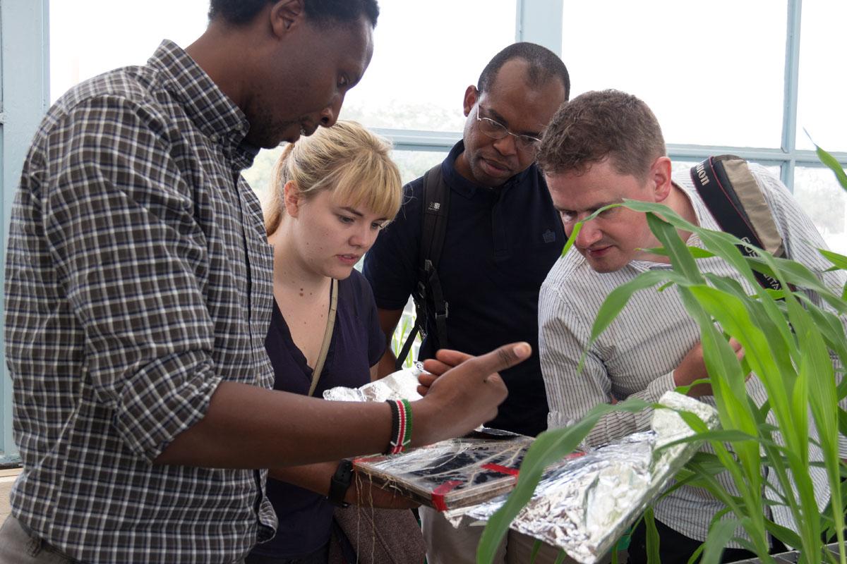 Kenyatta greenhouse steven runo