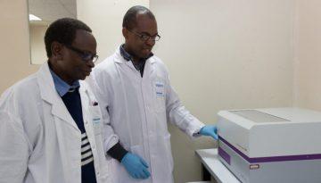 KASP genotyping platform acacia