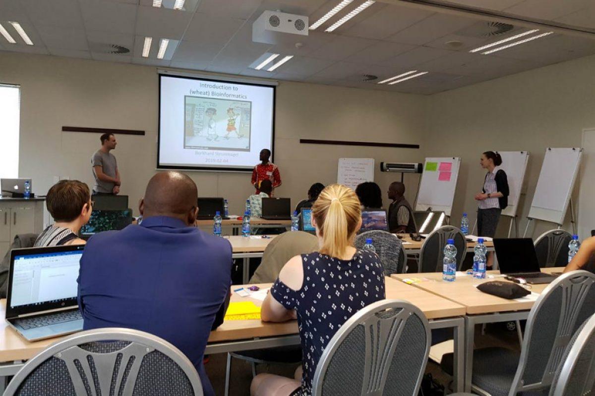 SA workshop 2cp